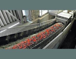 Fire Resistant Conveyor Belt In Australia