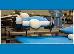 Food Grade Conveyor Belt Manufacturer, Exporter in Qatar